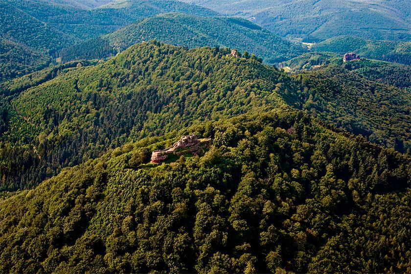 LUFTAUFNAHME – Pfälzerwald mit den Burgen Drachenfels und Fleckenstein © diepfalz.de