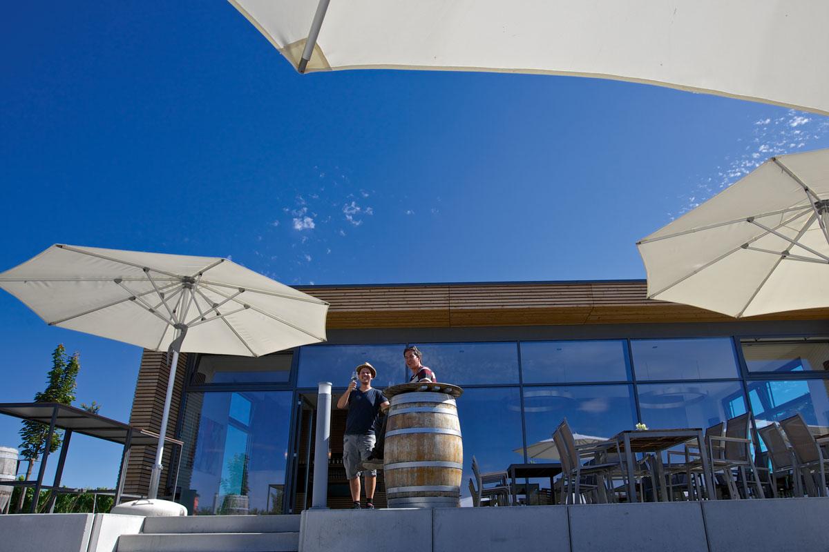 Architektur und Design erobern den Weinbau