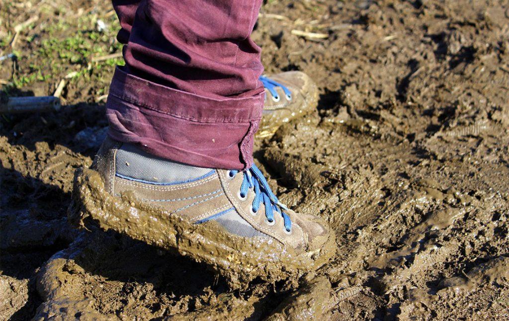 Lösshaltiger Boden © diePfalz.de