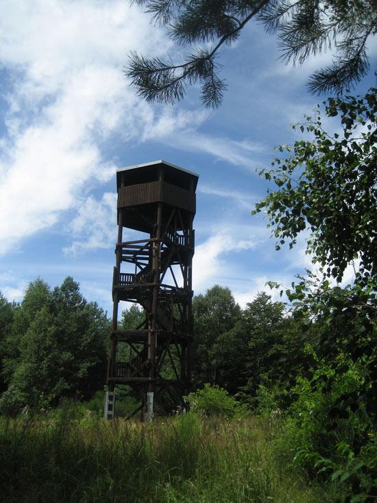 Wanderhütten im Pfälzerwald - Schindhübelturm bei Elmstein