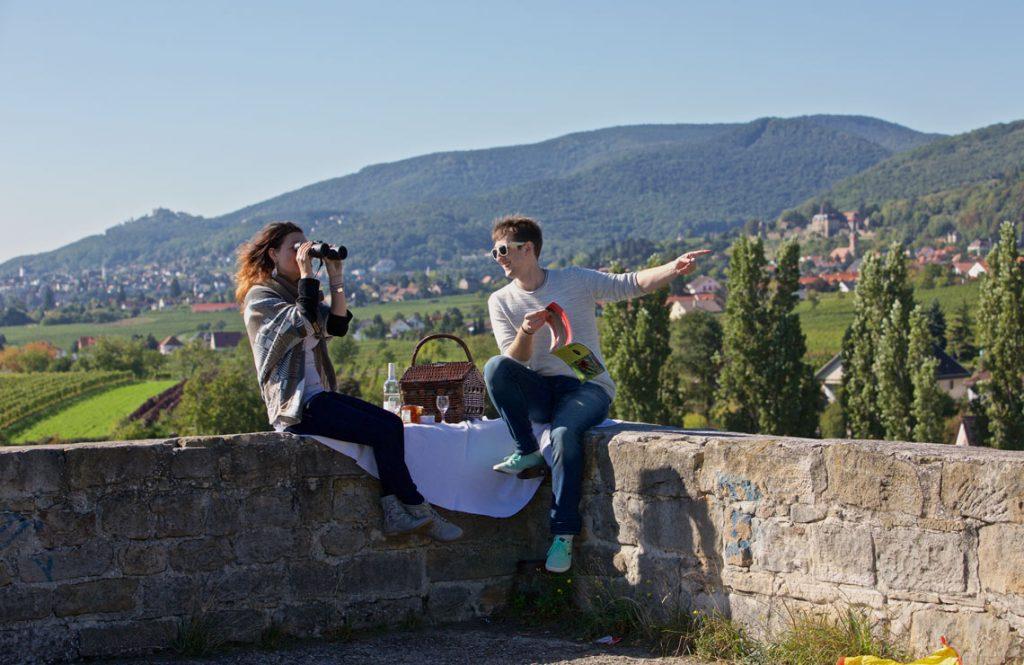 Picknickplätze an der Mittelhaardt - Alte Burg Neustadt/ Gimmeldingen