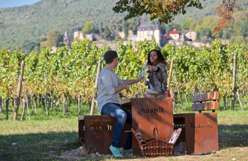 Picknickplätze an der Mittelhaardt - Neustadt/ Haardt