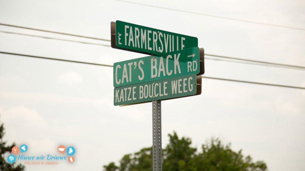 Katze Boucle Weeg